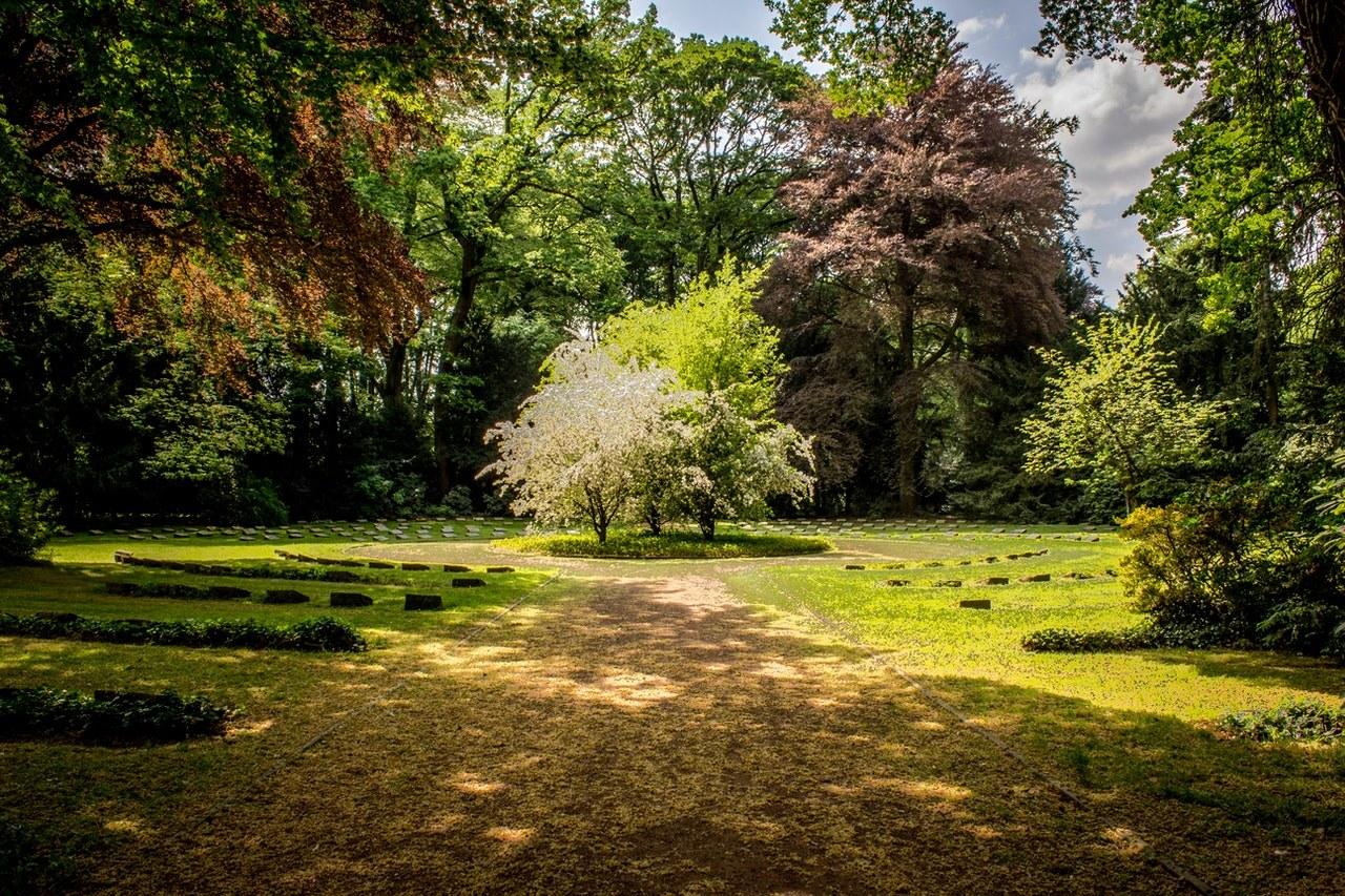 jardin rotofil lidl